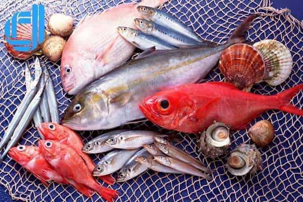 Bật mí những khu chợ mua bán hải sản tươi sống uy tín Đà Nẵng