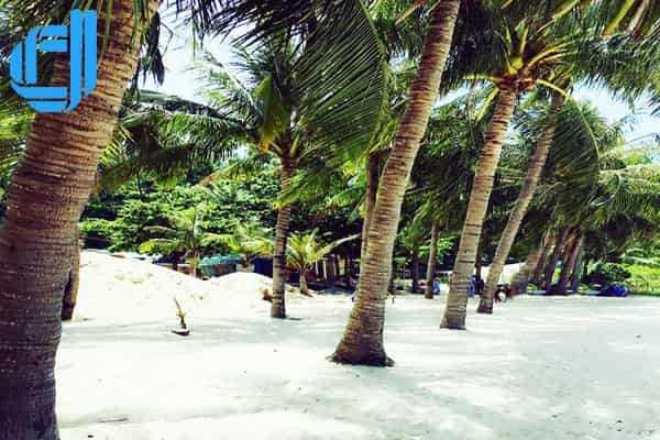 Điểm đến du khách Bình Dương du lịch Đà Nẵng rất thích thú D2Tour