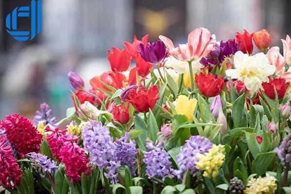 Các địa điểm du lịch Đà Nẵng tháng 4 tuyệt vời dành cho du khách