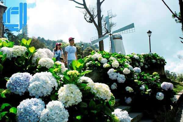 Gía tour du lịch Thanh Hóa Đà Nẵng trọn gói bao gồm những gì