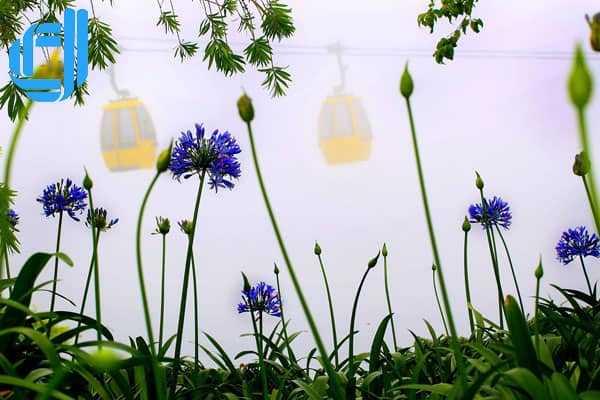 Gợi ý kinh nghiệm du lịch Đà Nẵng mùa mưa nên đi đâu, ăn gì thú vị