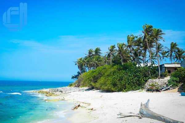 Kinh nghiệm du lịch đảo Lý Sơn giá rẻ tự túc bạn nên biết | D2tour