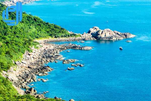 Tour du lịch Đà Nẵng 1 ngày lặn ngắm san hô tại bán đảo Sơn Trà