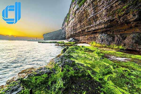 Tour đảo Lý Sơn 1 ngày khởi hành từ Đà Nẵng | D2tour Đà Nẵng
