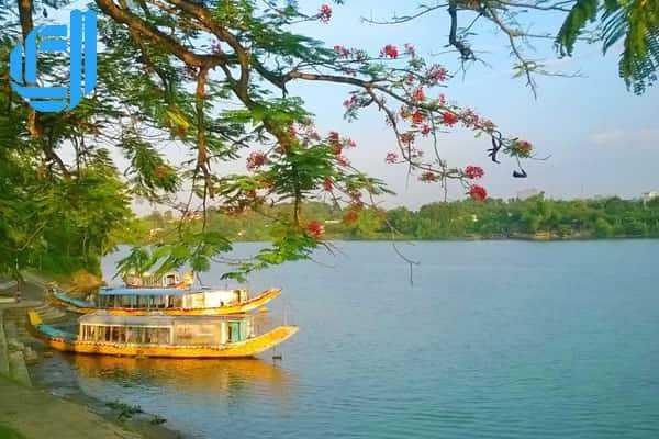Tour du lịch Đà Nẵng 3 ngày 2 đêm giá rẻ từ Nam Định | D2tour