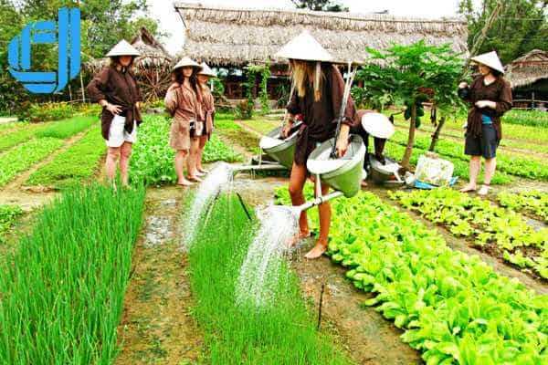 Trải nghiệm làm nông dân thứ thiệt tại làng rau Trà Quế Hội An